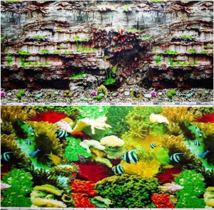 a double sided aquarium background with a rock face plus marine fish and coral
