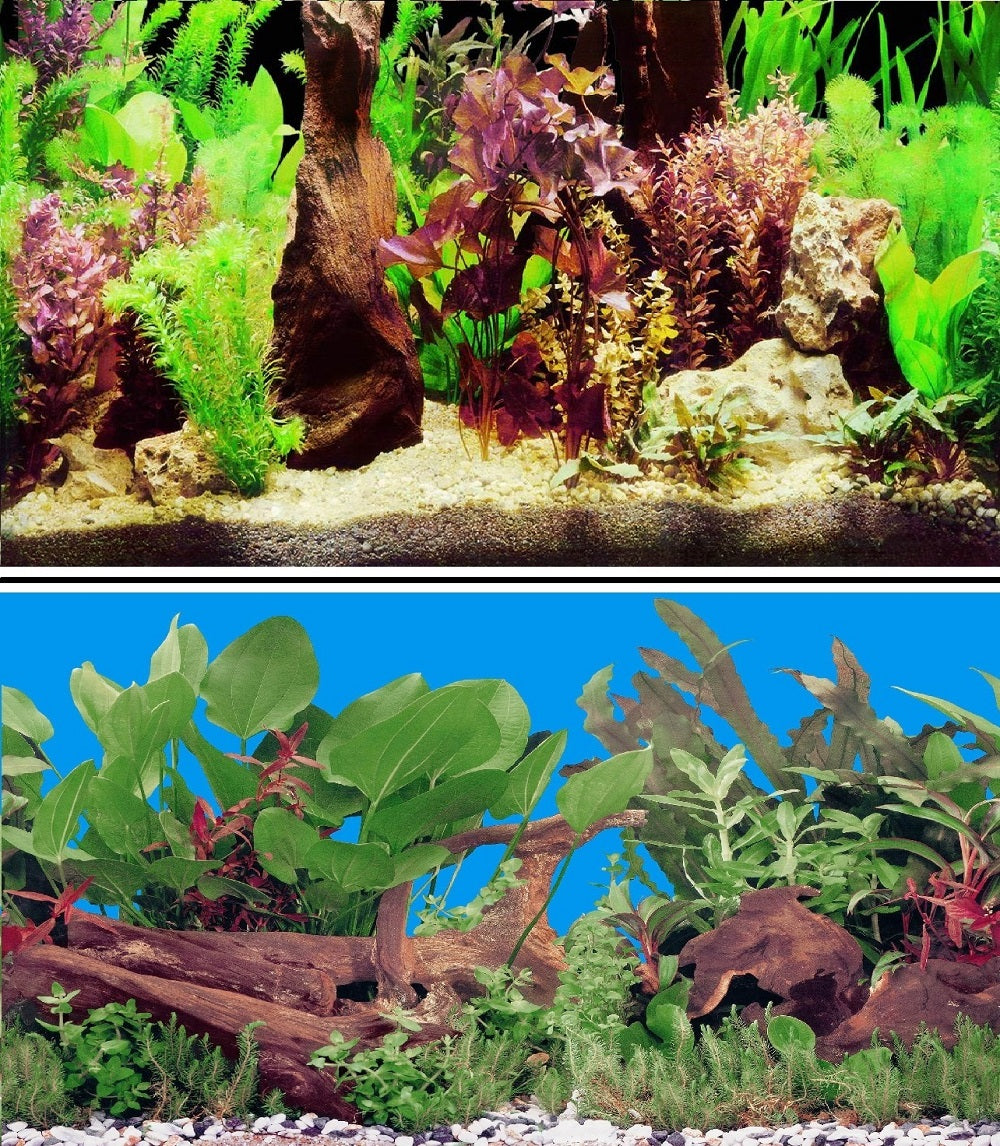 a double sided aquarium background with various plants and bogwood