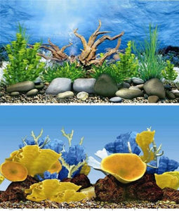 a double sided aquarium background with coral display and stoney river bed