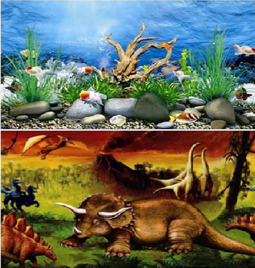 a double sided aquarium background with a dinasour scene and a shallow river bed