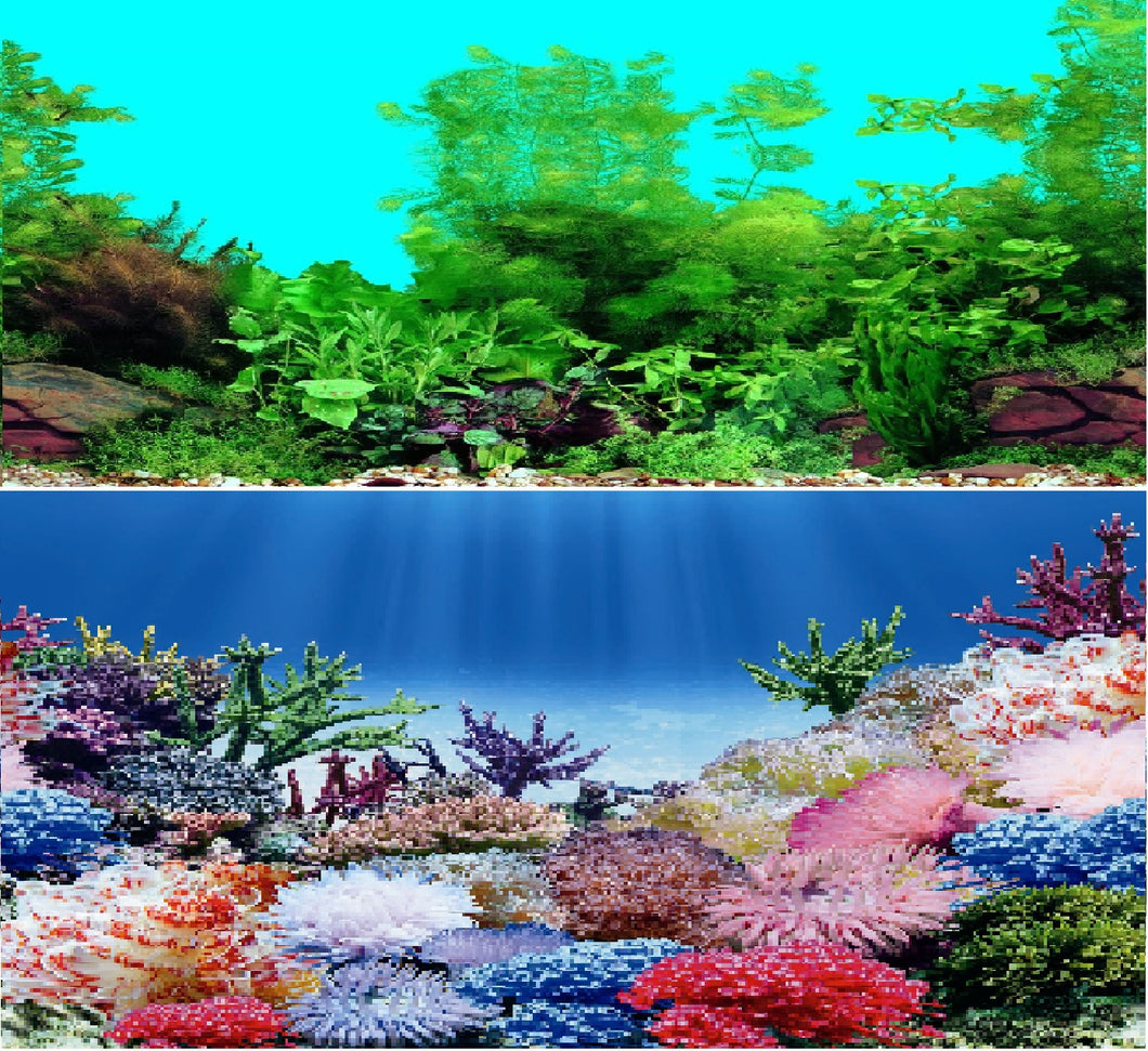 a double sided aquarium background with a coral and tropical scene