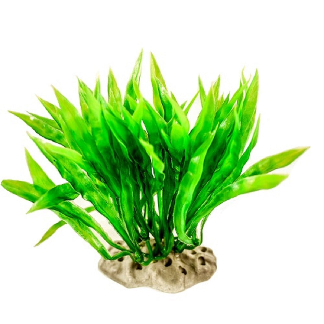 an artificial aquarium plant with feathered green leaves