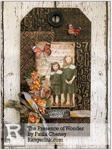 The Presence of Wonder by Paula Cheney