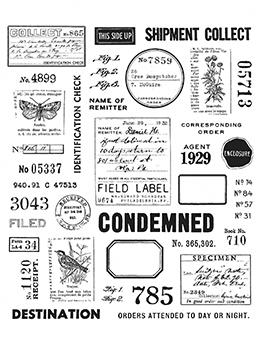 Tim Holtz The Field Notes Stamp Set Stamps Tim Holtz Other