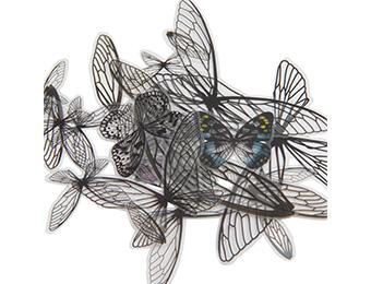 Tim Holtz® Idea-ology Paperie - Transparent Wings Idea-ology Tim Holtz Other