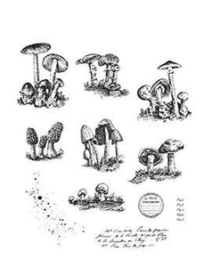 Tim Holtz Stampers Anonymous Cling Mount Stamps - Tinny Toadstools Stamps Tim Holtz Other