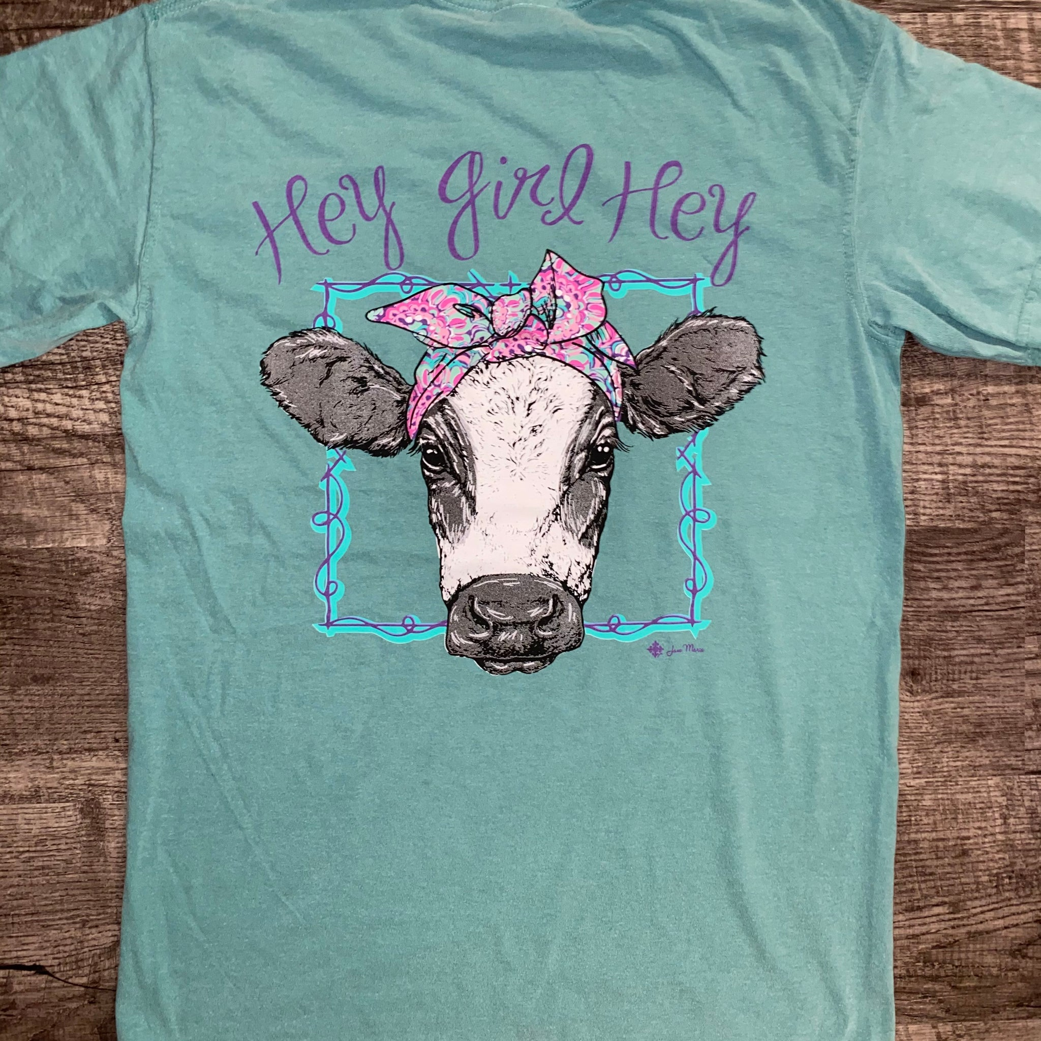 Jane Marie- Hey Girl Hey T-Shirt