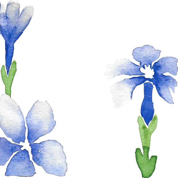 Spring Gentian: Self-Belief and Trust