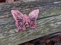 Set of 7 Copper XL Dead Butterfly Pins