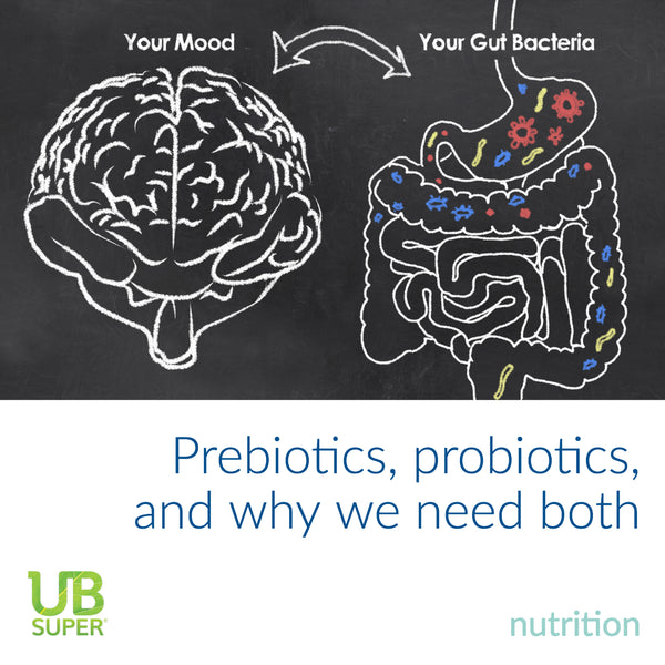 What Everybody Ought To Know About Prebiotics And Probiotics
