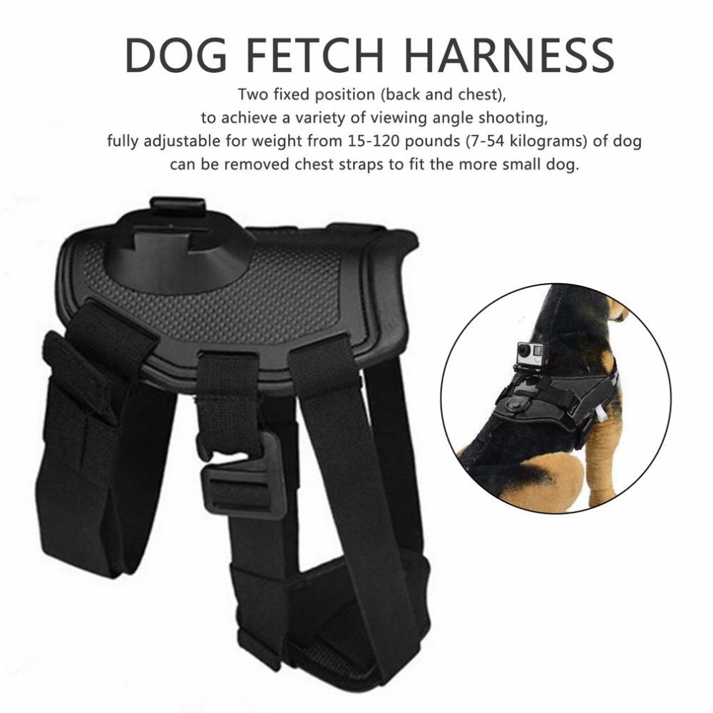 Cheapest and Best Reviews for GoPro Hero Dog Strap Belt Harness  at trendingvip.com