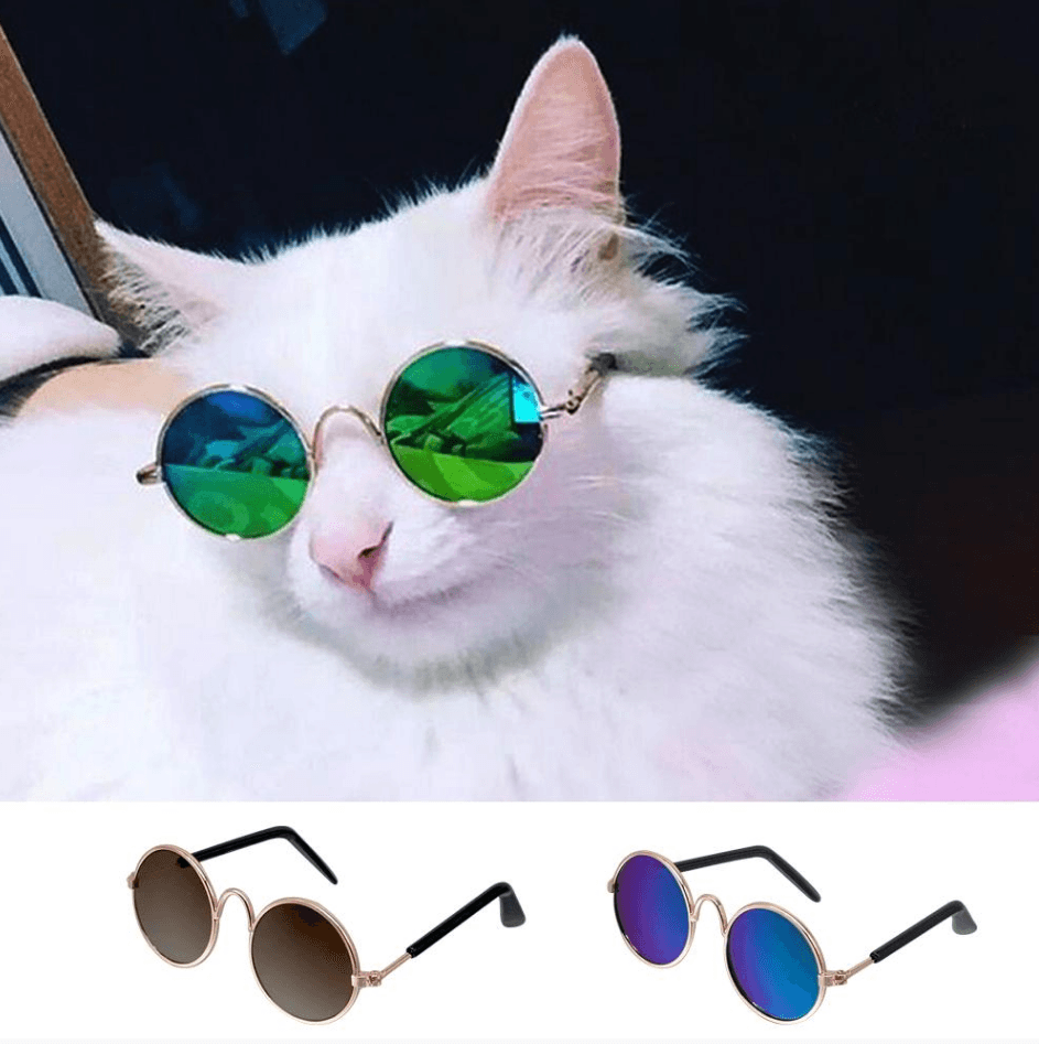 Cheapest and Best Reviews for Pet Round Sunglasses (Small Pet )  at trendingvip.com