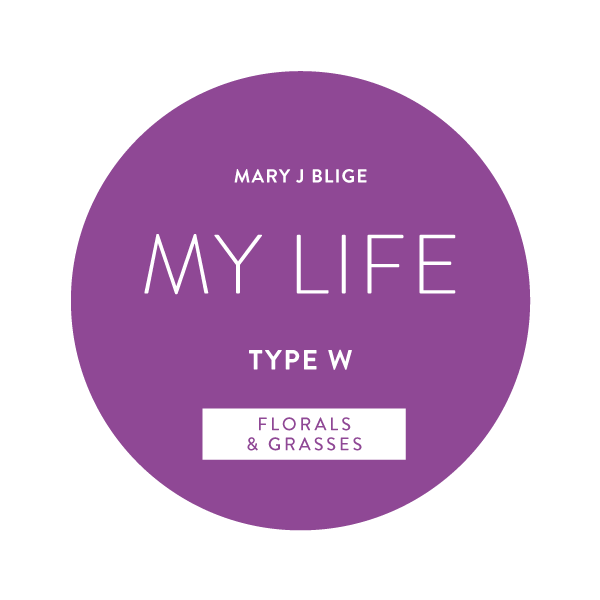 Mary J Blige My Life Type W