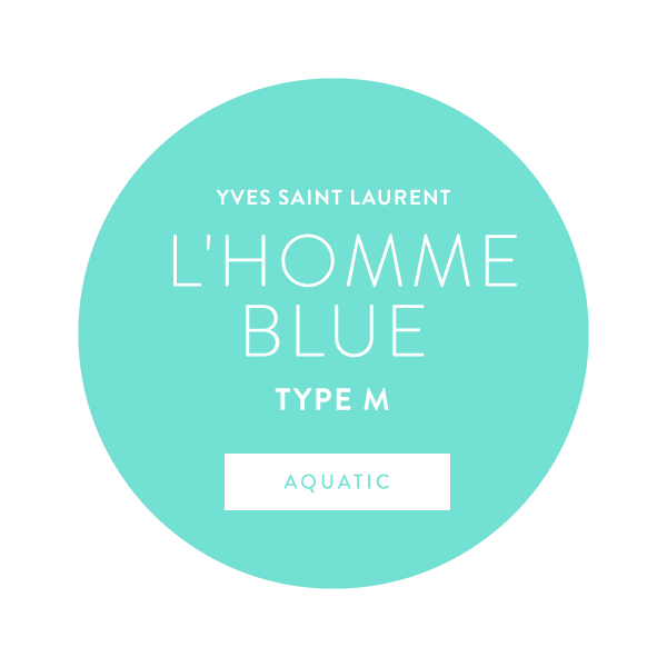 Yves Saint Laurent L'Homme Blue Type M