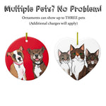 Ornaments - Custom Pet Portrait Ornament
