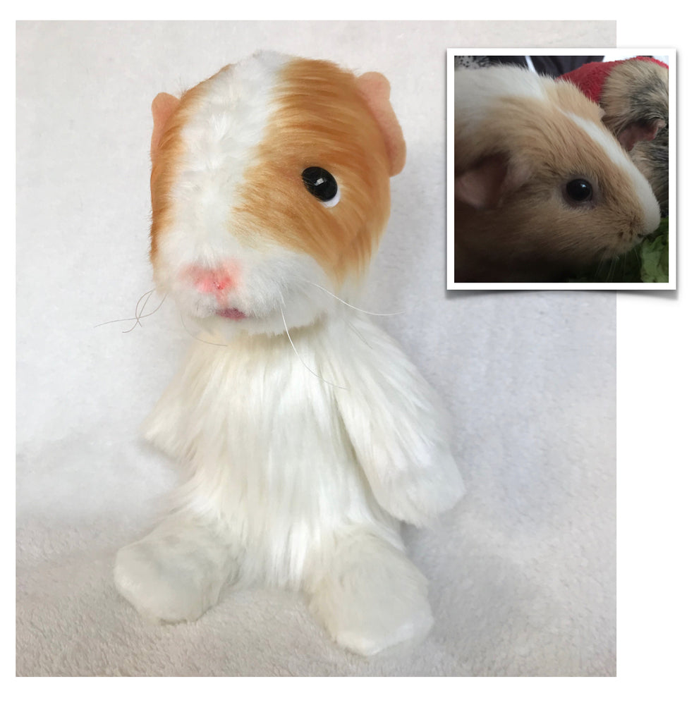 Stuffed Animals - Custom Plush Bunny/Other Pet Replica—12 To 15""