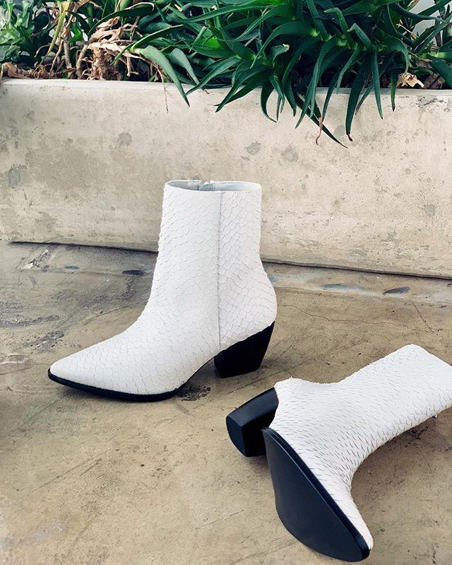 Caty Boot in White by Matisse | Booties