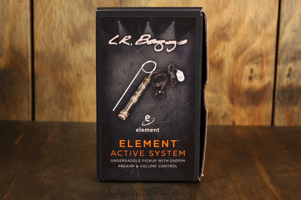 LR Baggs EAS Element Active System