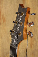 PRS Custom 22 Copperhead