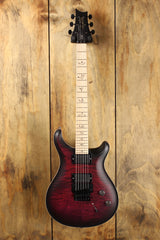 PRS Dustie Waring CE24 Floyd Limited Edition
