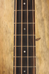 Taylor GS Mini-e Bass