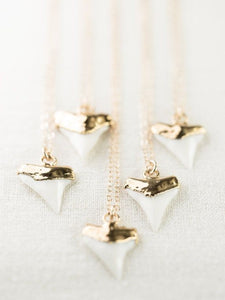 Niho white gold shark tooth necklace - Uli Uli Jewelry