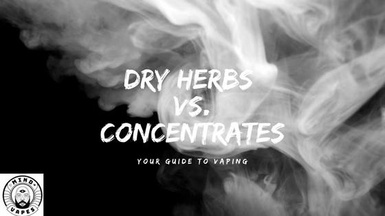 Dry Herbs vs. Concentrates : Your Guide to Vaping