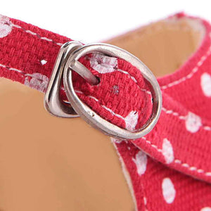 Sandals buckle Print Canvas