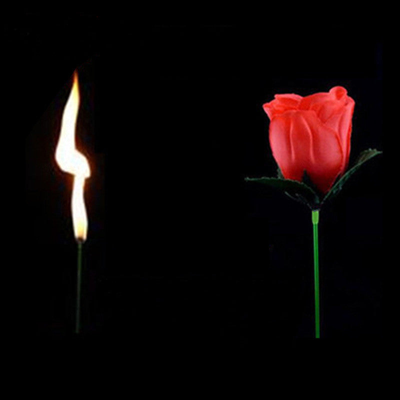 Magic Torch Rose