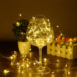 10M 100LED Color Fairy Christmas Decoration