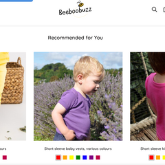 Beeboobuzz product recommendations