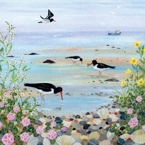 Coast and Country - Oystercatchers Blank Card with Envelope