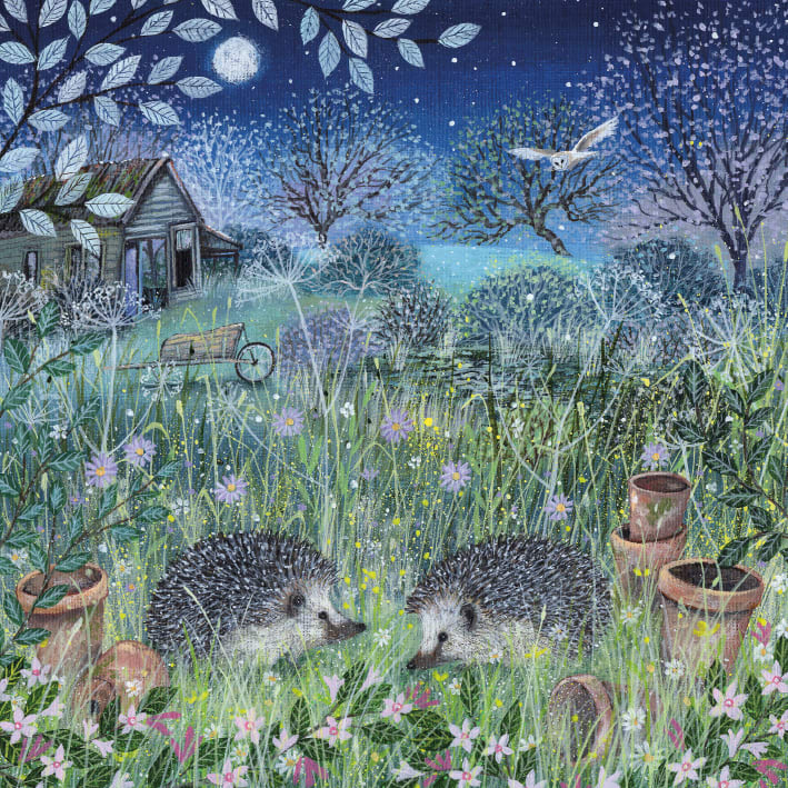 Coast and Country - Hedgehogs Blank Card with Envelope