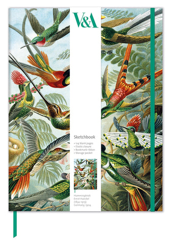 V&A Trochilidae Hummingbirds Sketch Book