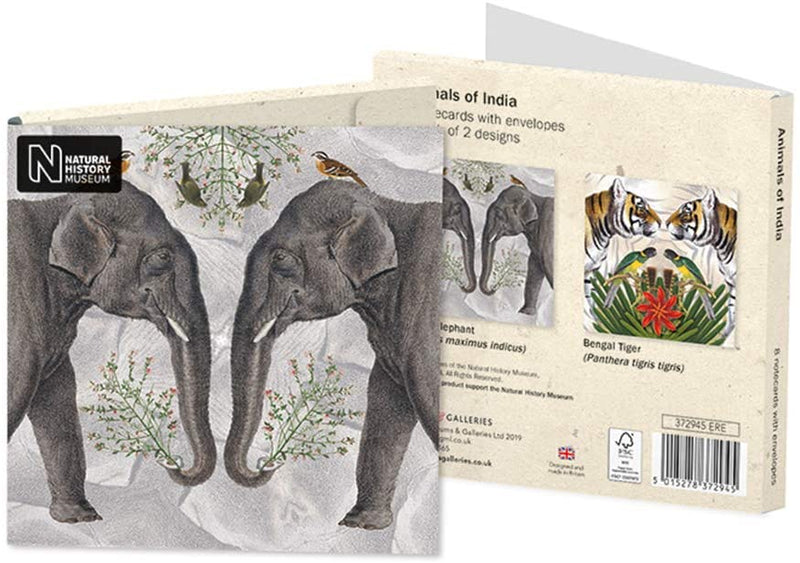 Natural History Museum - Animals of India Square Notecard Wallet - Bee's Emporium
