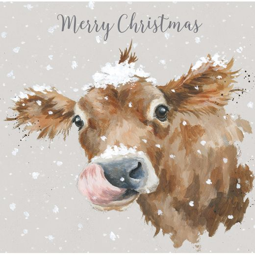 Wrendale Designs – 'First Taste of Snow' Cow Luxury Boxed Christmas Cards