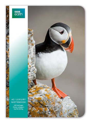 BBC Earth Puffin A5 Luxury Notebook - Bee's Emporium