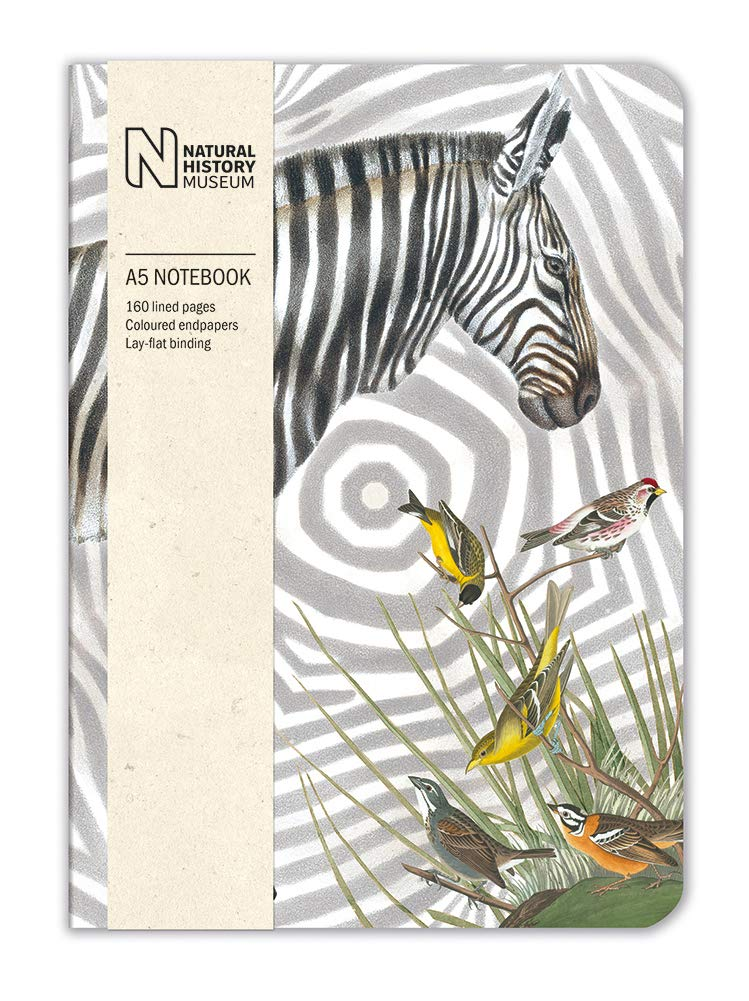 Natural History Museum Zebra A5 Luxury Notebook - Bee's Emporium