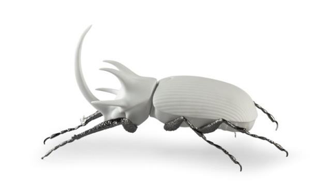 Rhinoceros Beetle (Matte White)