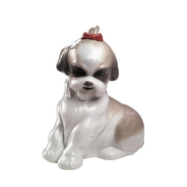 Nao Pampered Shih-Tzu Dalmazio Design