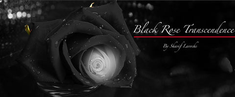 Black Rose Transcendenceタイトルなしby Sharif Laroche
