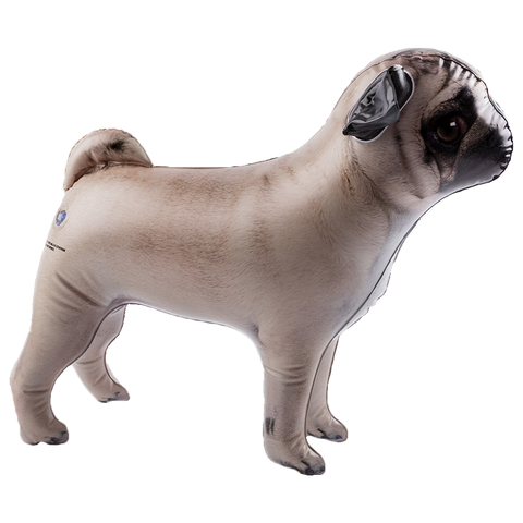 MOQ:6 Inflatable Pet - Pug