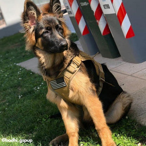 Military Tactical Dog Vest