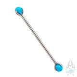 Natural Stone Ball in Prong's Industrial Barbell
