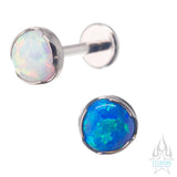 5mm Prong-Set Opal Cabochon on Flatback