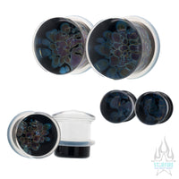 Zoa Glass Plugs - Amber Purple