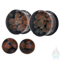 Zoa Glass Plugs - Nebula