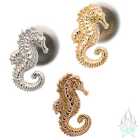Seahorse in Gold - on flatback