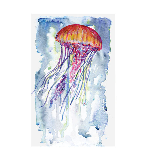 Prints & Postcards: Jelly Fish