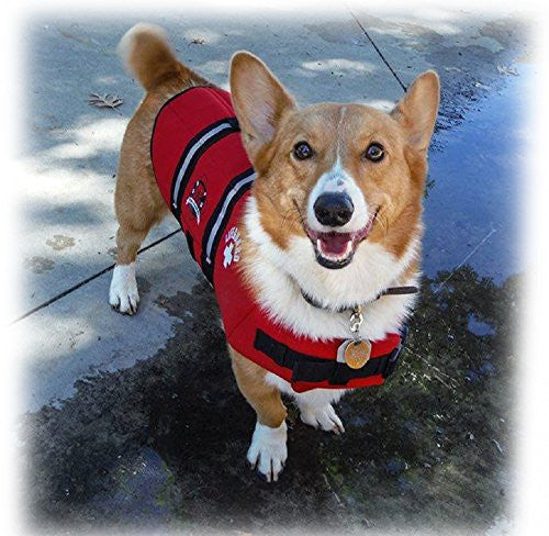 Paws Aboard Red Neoprene Life Jacket, Dog or Cat Life Preserver (Medium 20-50 Lbs)